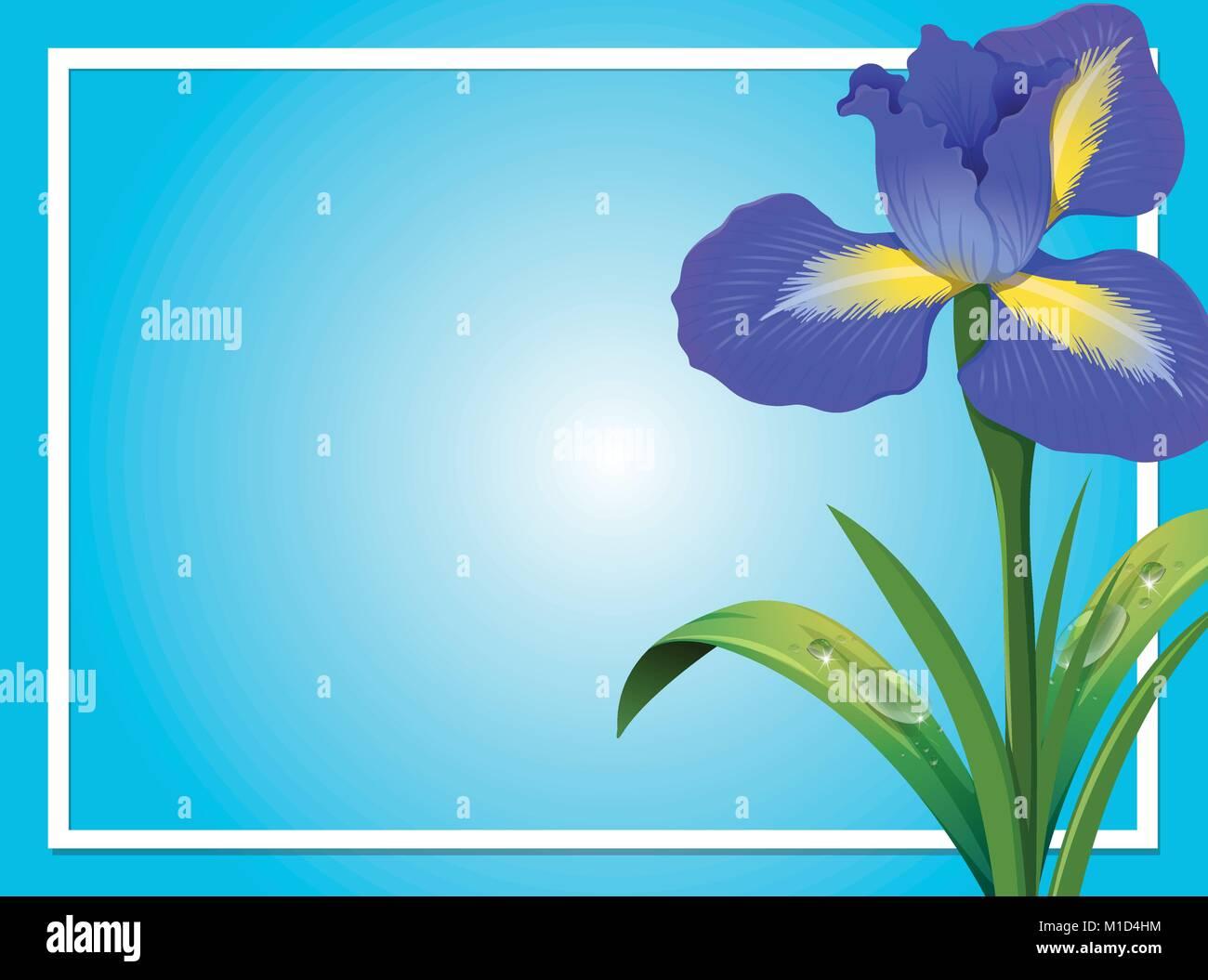 Border Template With Blue Iris Illustration Stock Vector Art