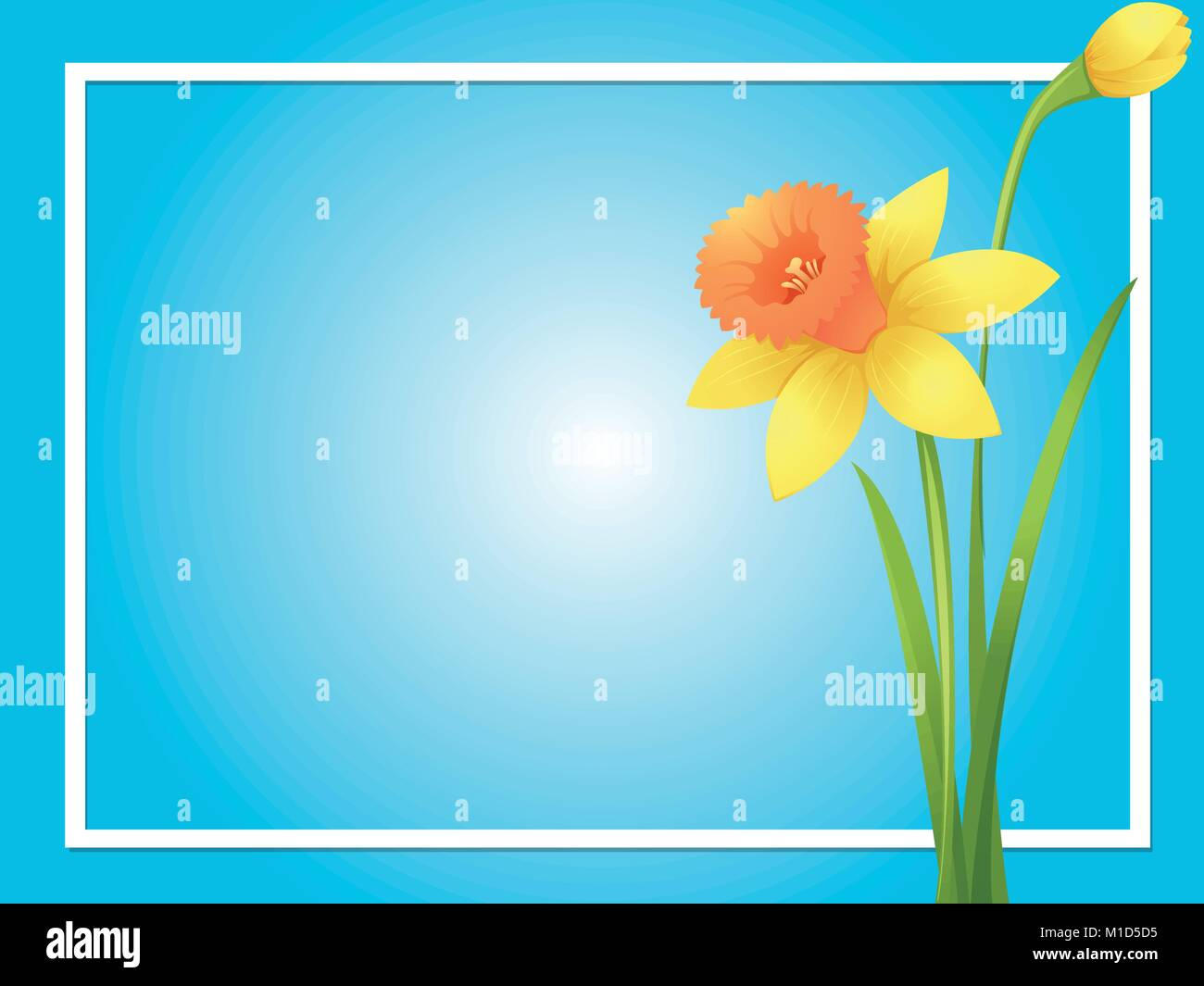 daffodil graphic stock vector images alamy