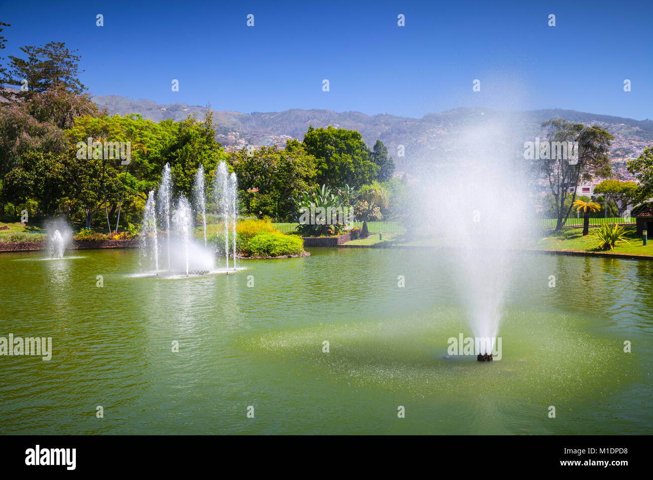 Fountains in pond of Santa Catarina Park, this is one of the largest parks of Funchal, Madeira island, Portugal - Stock Image
