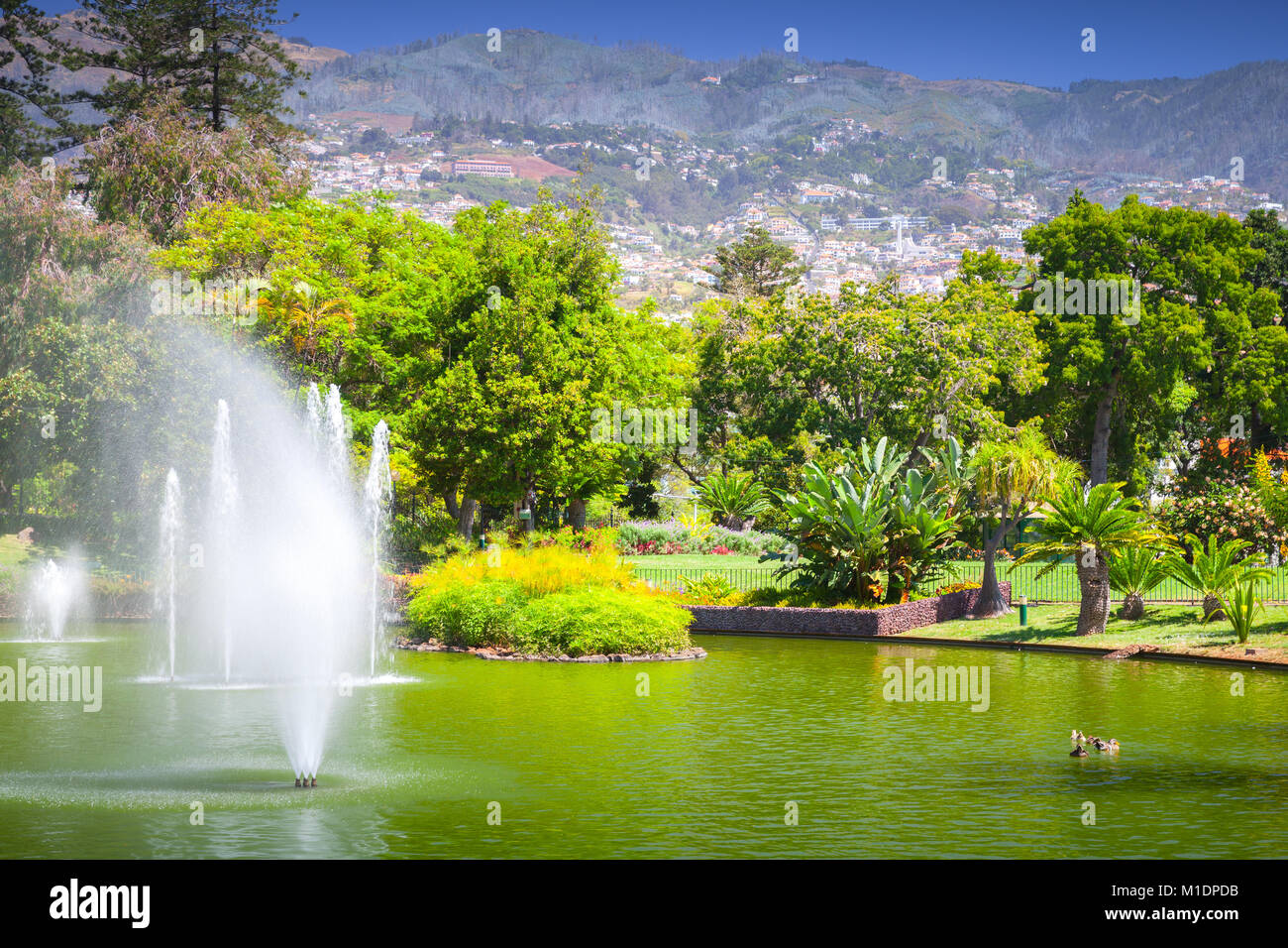 Fountains in Santa Catarina Park, this is one of the largest parks of Funchal, Madeira island, Portugal - Stock Image