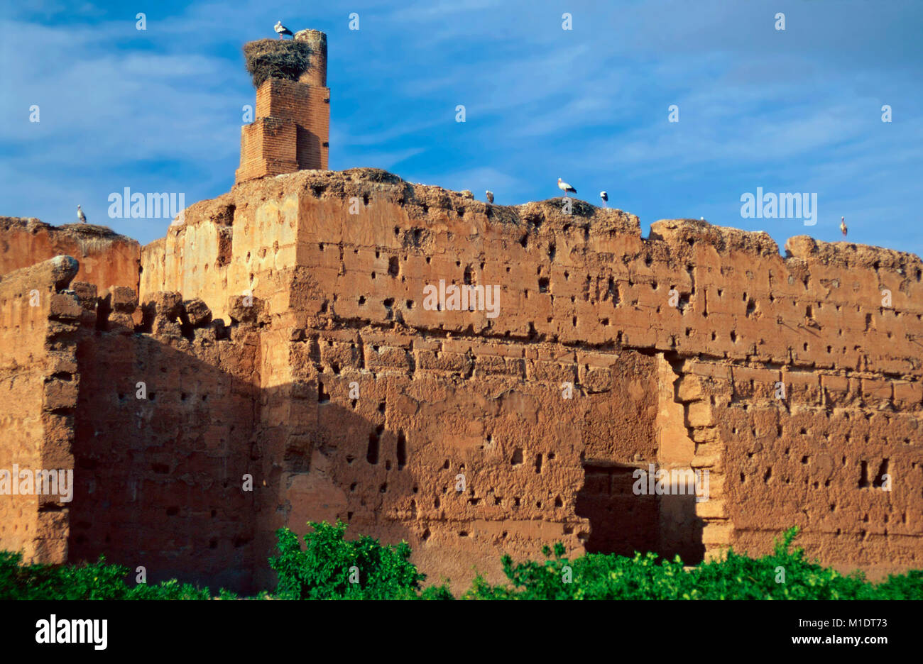 Stork nests,El Badi Palace,Marrkesh,Morocco Stock Photo
