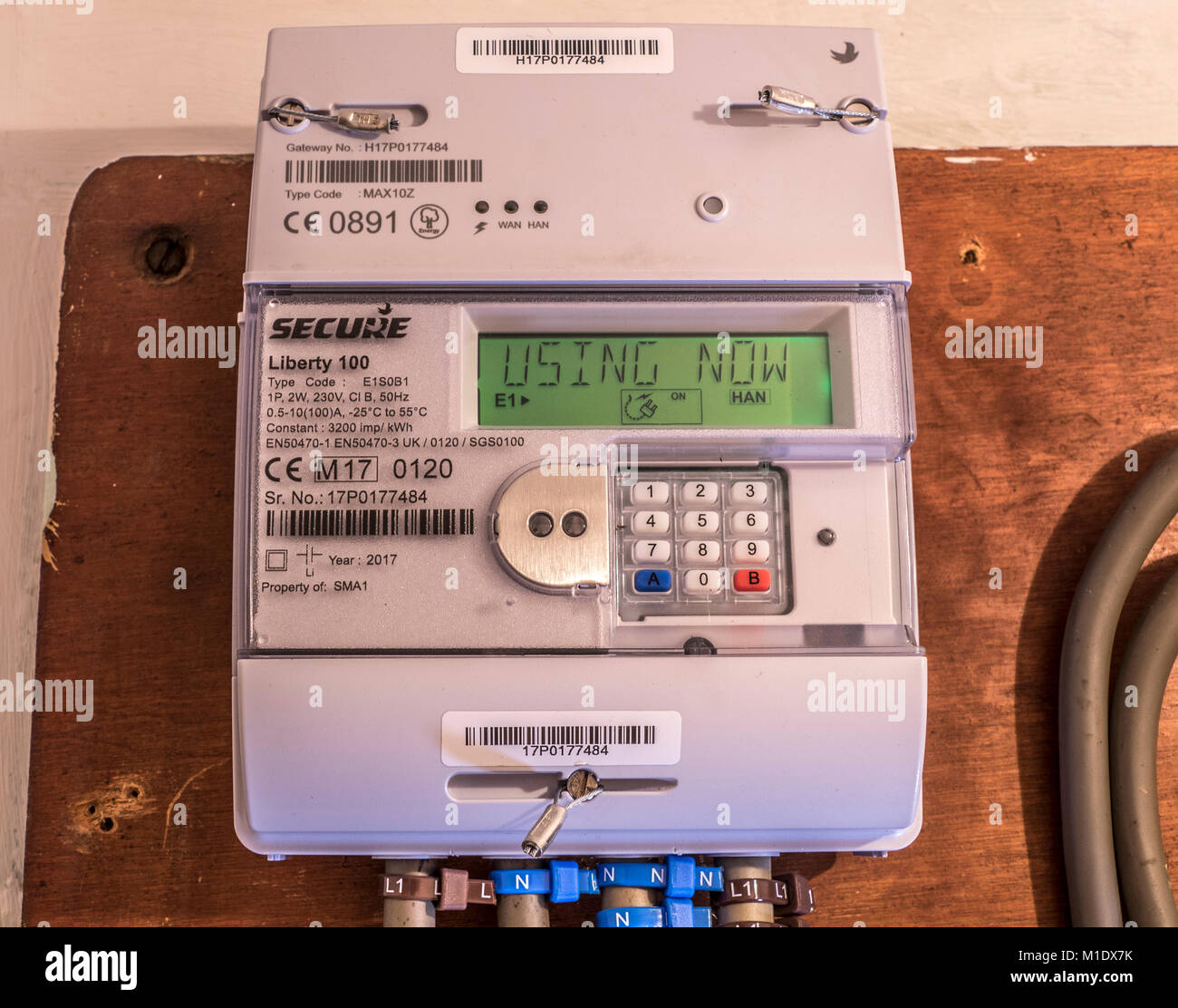 Secure Liberty 100 smart electricity meter, measuring consumption and relaying 'Using Now' information via - Stock Image