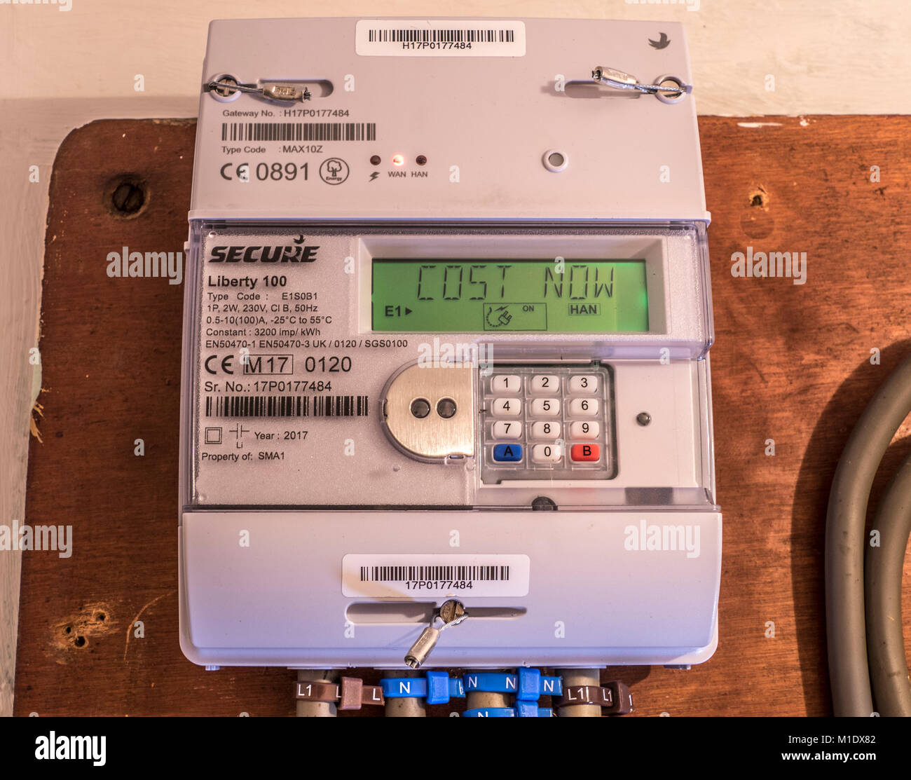 Secure Liberty 100 smart electricity meter, measuring consumption and relaying 'Cost Now' information via - Stock Image
