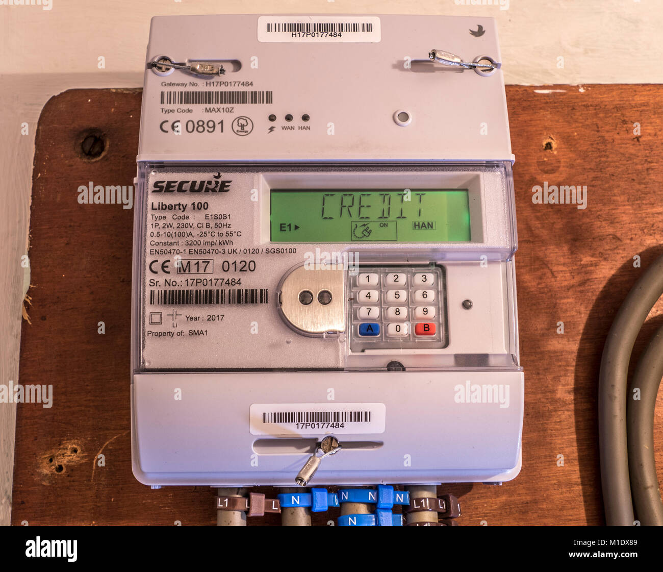 Secure Liberty 100 smart electricity meter, measuring consumption and relaying 'Credit' information via - Stock Image
