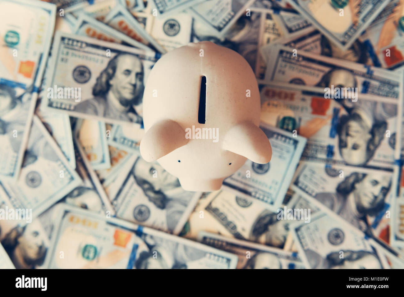 Piggy moneybox with dollar cash - Stock Image