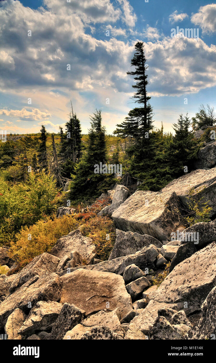 Bear Rocks Dolly Sods West Virginia - Stock Image