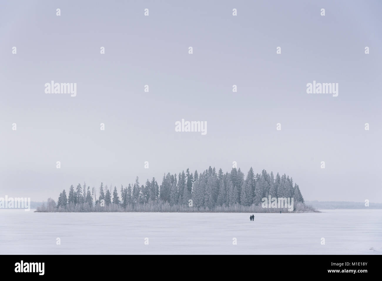 Couple walking on Astotin Lake, frozen winter landscape, Elk Island National Park, Alberta, Canada - Stock Image