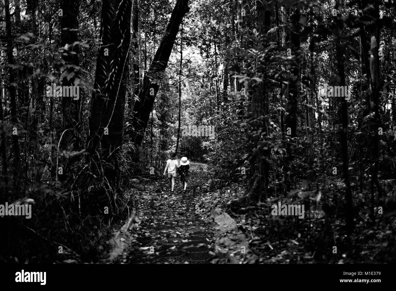 Two girls walking along a track in a rainforest, black and white, Paluma range national park, Queensland, Australia - Stock Image