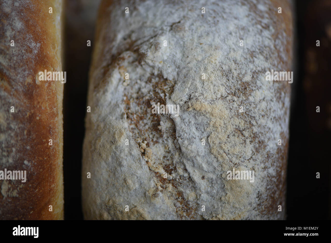 close up food of artisan white loaf of bread that has been home made and baked with dusted flour top - Stock Image