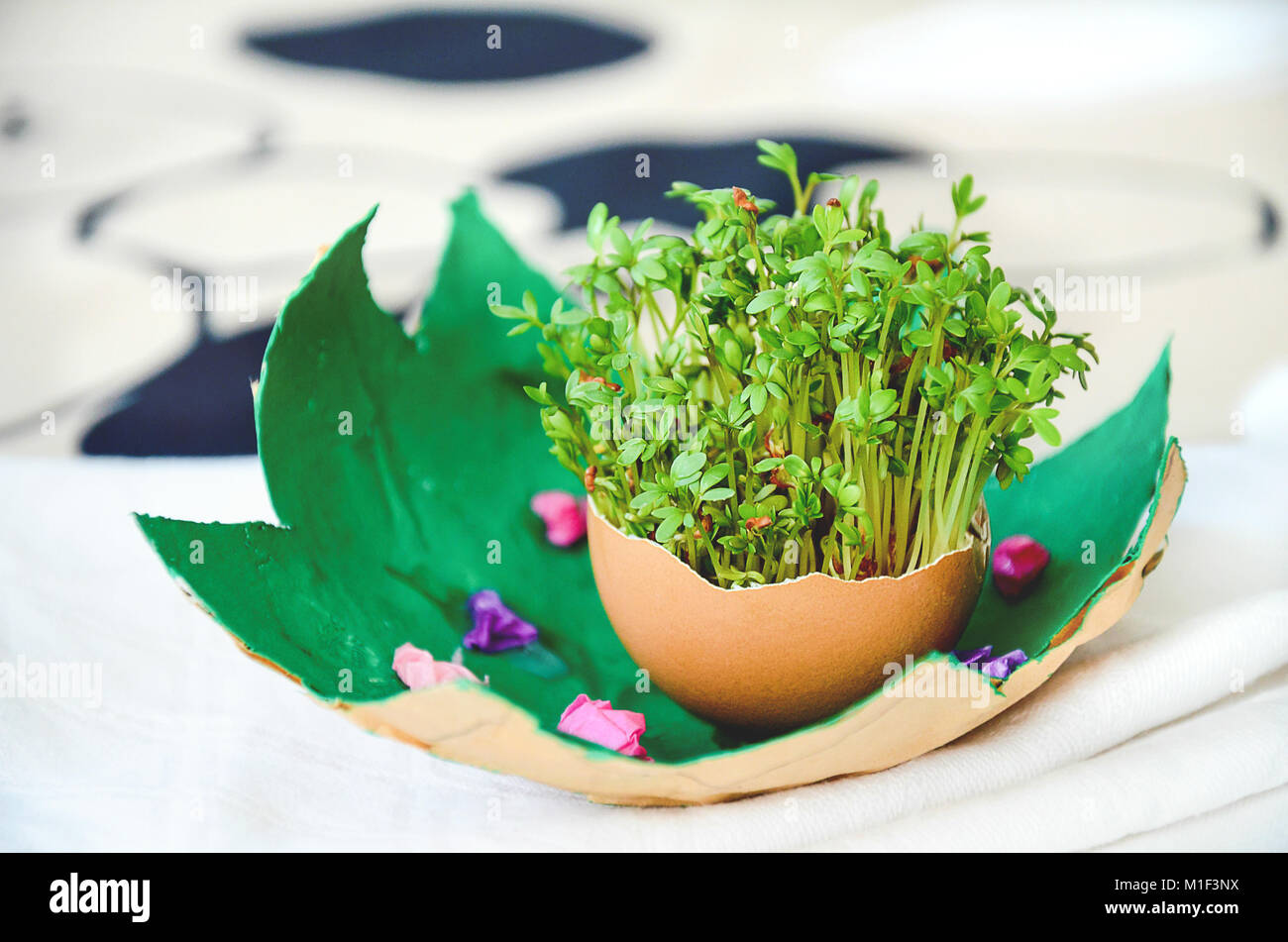 Watercress Salad Growing In Egg Shell Arranged As Table Decoration