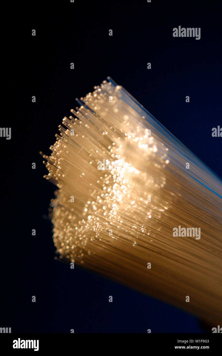 Fibre optic filaments bundle - Stock Image