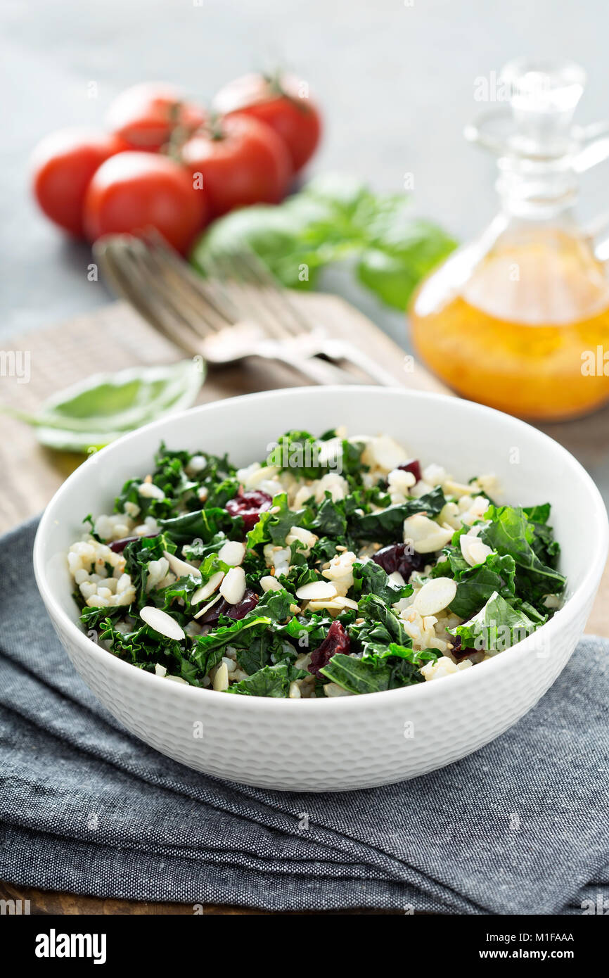 Warm kale salad with brown rice, almonds and dried cranberry - Stock Image