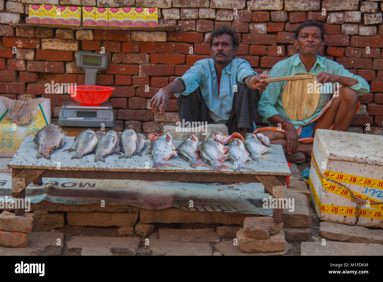 Street vendors fanning away flies from the fish they are selling on the street in Varanasi, Uttah Pradesh, India - Stock Image
