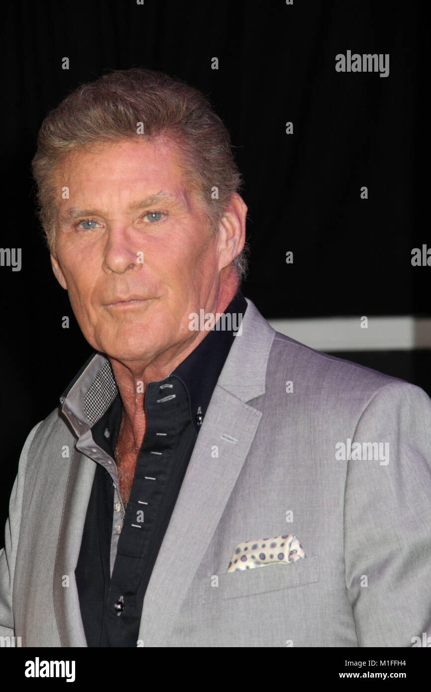 david hasselhoff 01 29 2018 the world premiere of black panther stock photo 173059856 alamy. Black Bedroom Furniture Sets. Home Design Ideas
