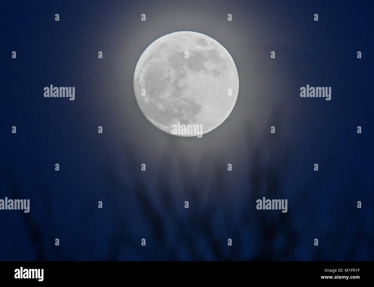 Sieversdorf, Germany. 30th Jan, 2018. The moon, 99 percent visible according to the moon calender, shining behind - Stock Image
