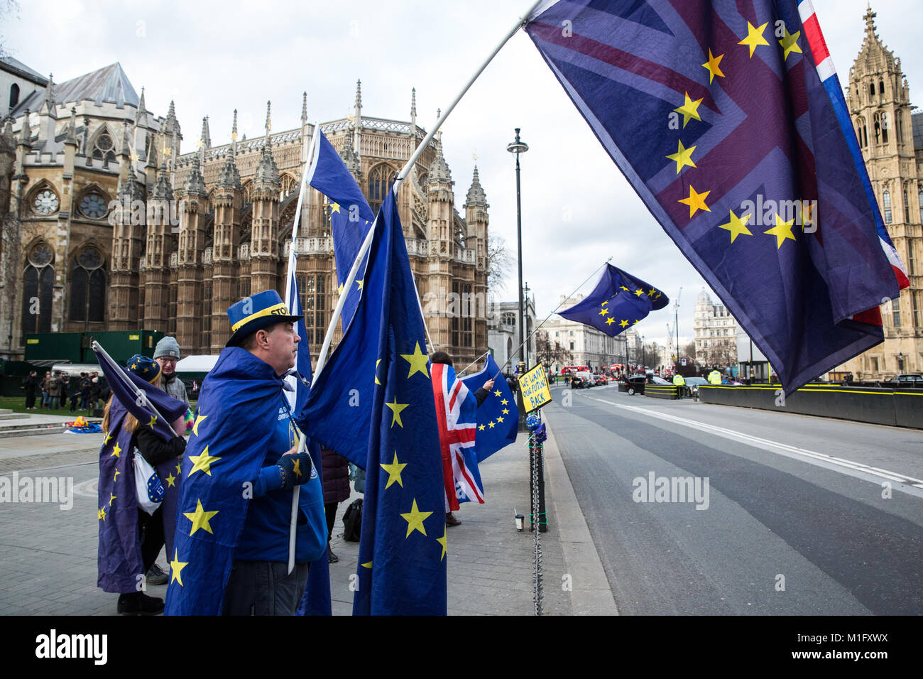 London, UK. 30th Jan, 2018. Anti-Brexit protesters from SODEM (Stand of Defiance European Movement) wave European - Stock Image