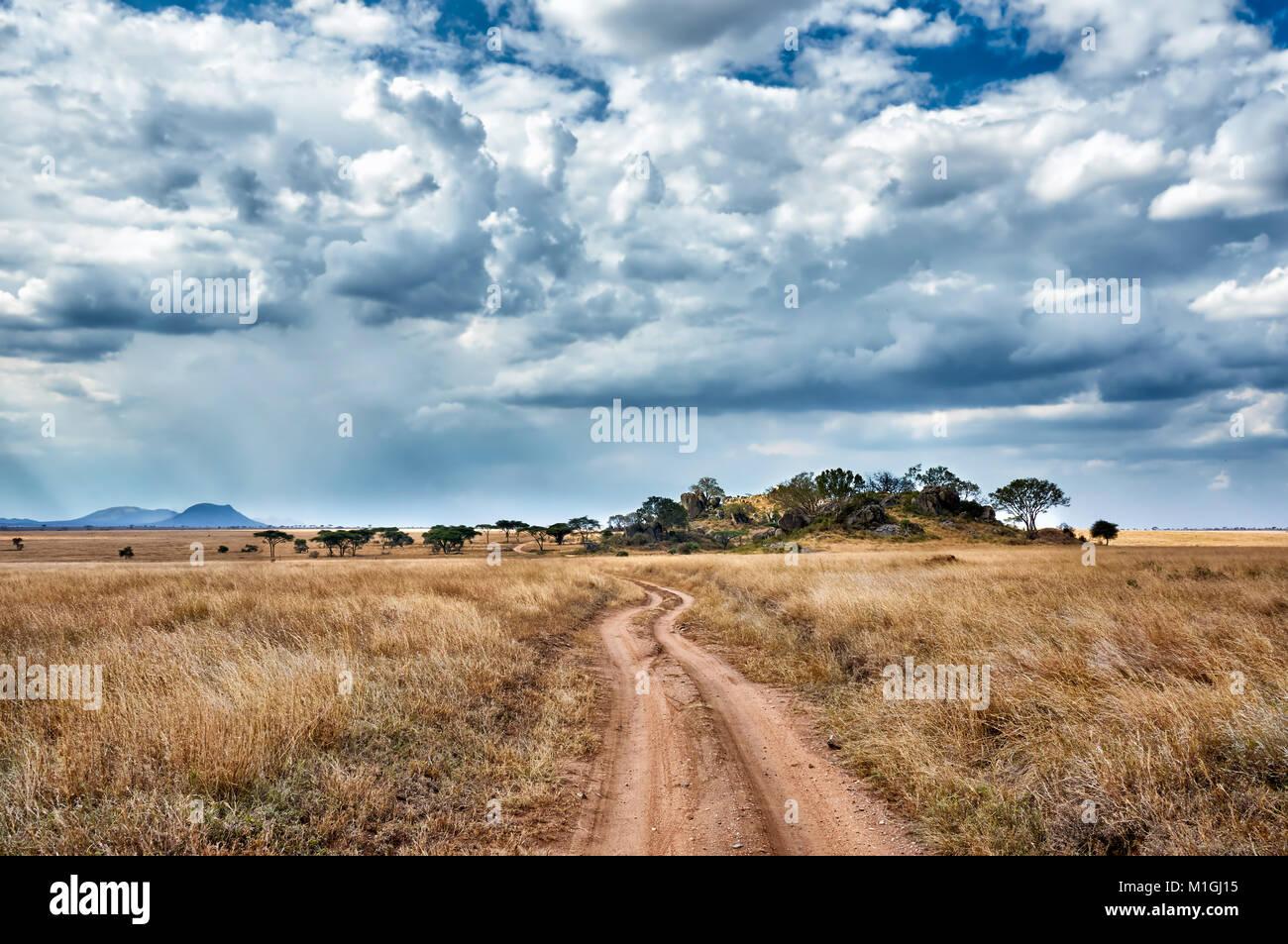 gravel road through landscape in Serengeti National Park, UNESCO world heritage site, Tanzania, Africa - Stock Image