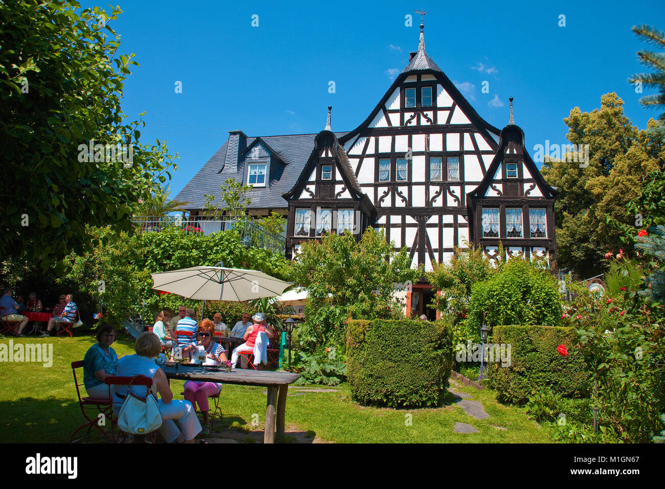 Vineyard Three Gable house, 300 hundred years old half-timbered house, gastronomy at beautiful garden, Kroev, Moselle, - Stock Image