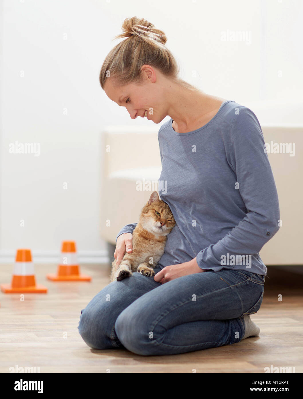 Domestic cat. Tabby adult and young woman smooching. Germany - Stock Image