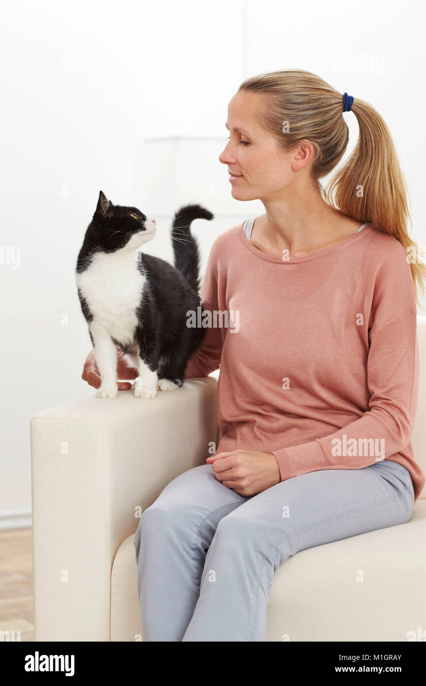 Domestic cat. Tuxedo adult and young woman sitting on a white couch. Germany - Stock Image