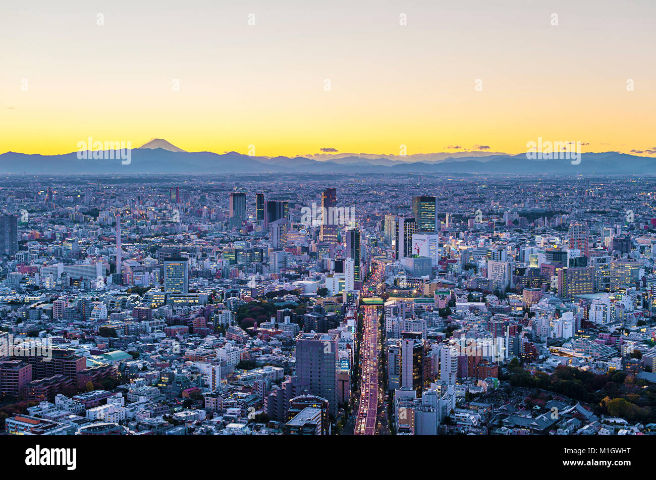 Aerial Cityscape View Tokyo Japan - Stock Image