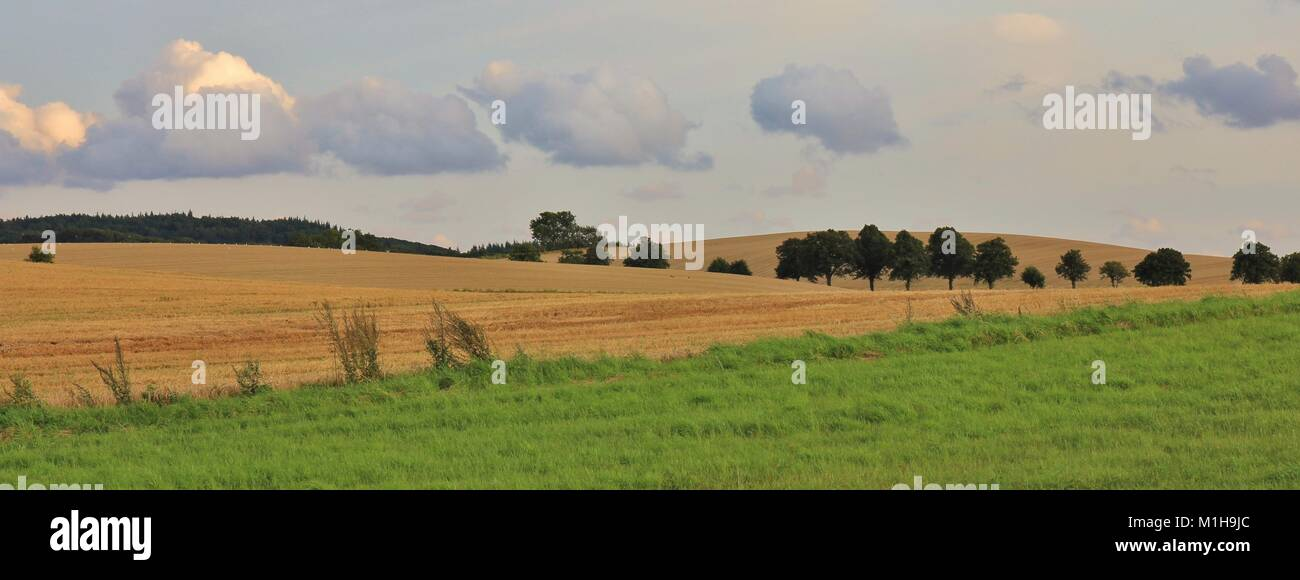 Rural landscape in Moen, Denmark. Fields and trees. - Stock Image