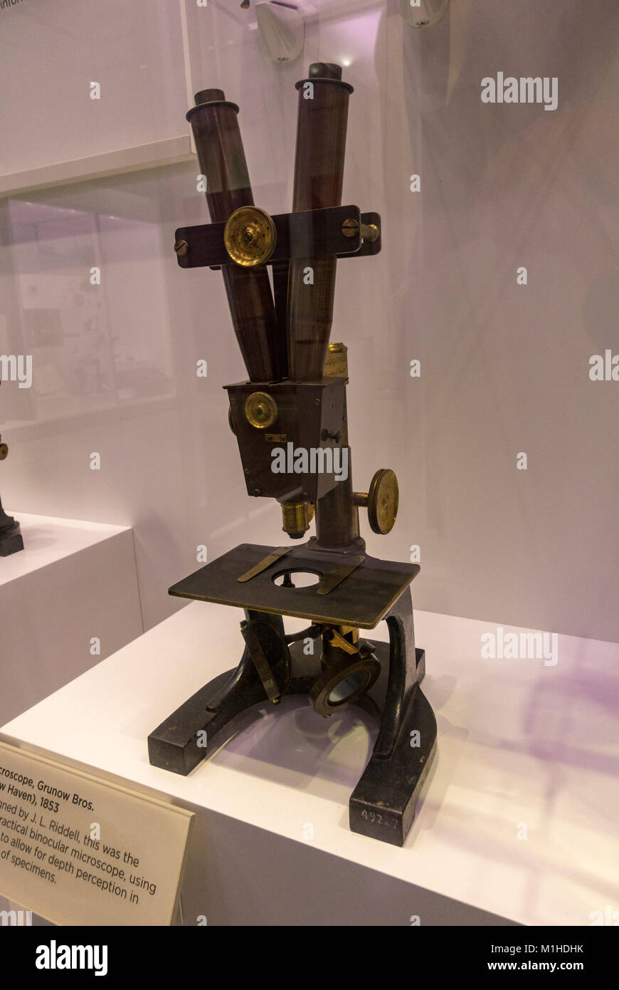 Grunow Bros (New Haven) binocular microscope designed by J.L. Riddell on display in the National Museum of Health - Stock Image