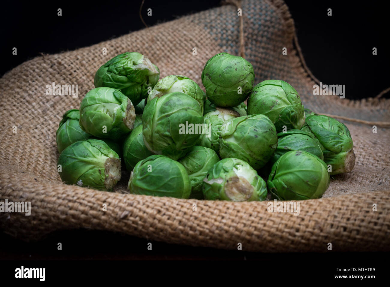 Brussel sprouts on hessian - Stock Image