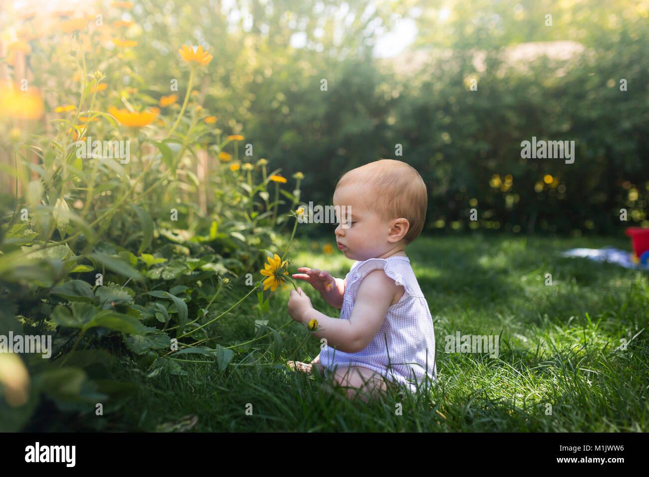 Baby Girl Sitting in Grass Holding Flower - Stock Image
