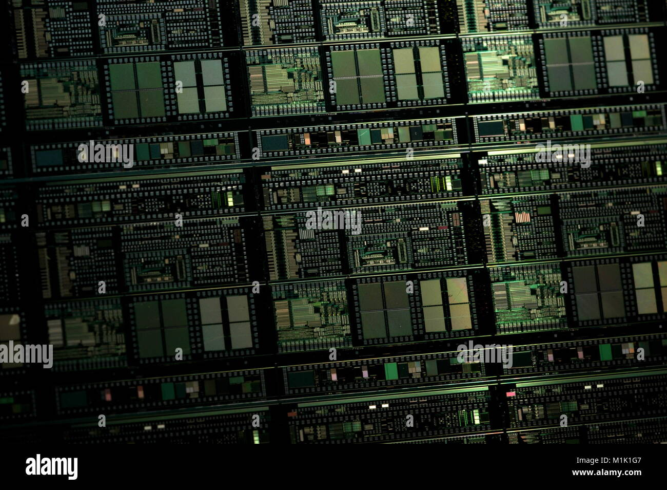 Microprocessor Chip Silicon Stock Photos Electronic Integrated Circuit Royalty Free Image A Close Up Shot Showing Multiple Chips On Manufacturing Wafer Before They Are