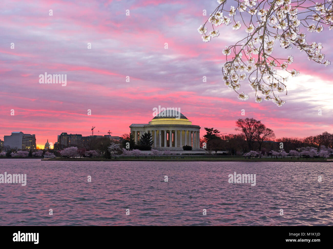 Urban panorama with Thomas Jefferson Memorial and US Capitol at sunrise during cherry blossom season in Washington - Stock Image