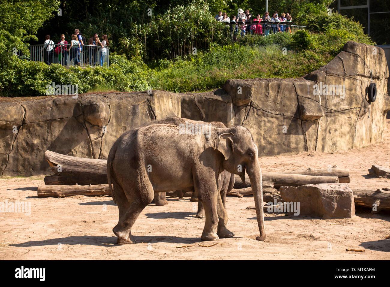 Zoo im Berlin Zoological