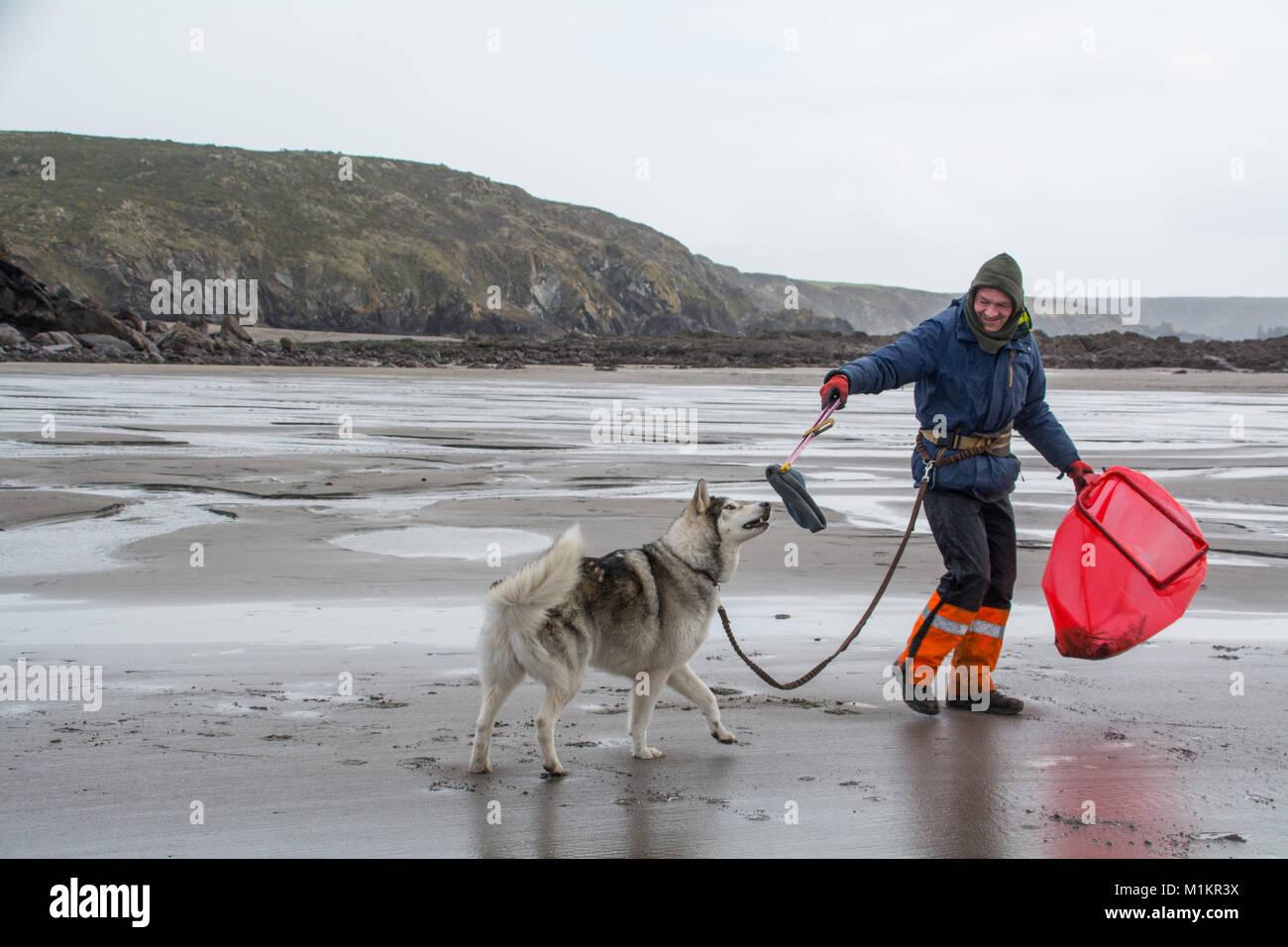 Kennack Sands, Lizard Peninsula, Cornwall, UK. 31st Jan 2018. Wayne Dixon former soldier and support worker originally Stock Photo