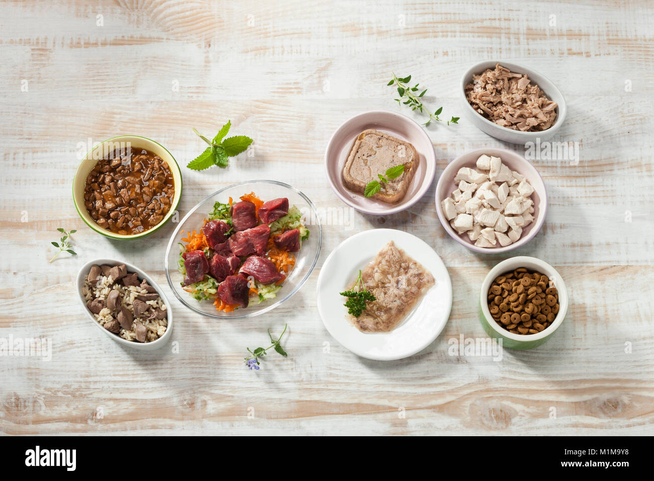 Different cat food on parquet. Germany. - Stock Image