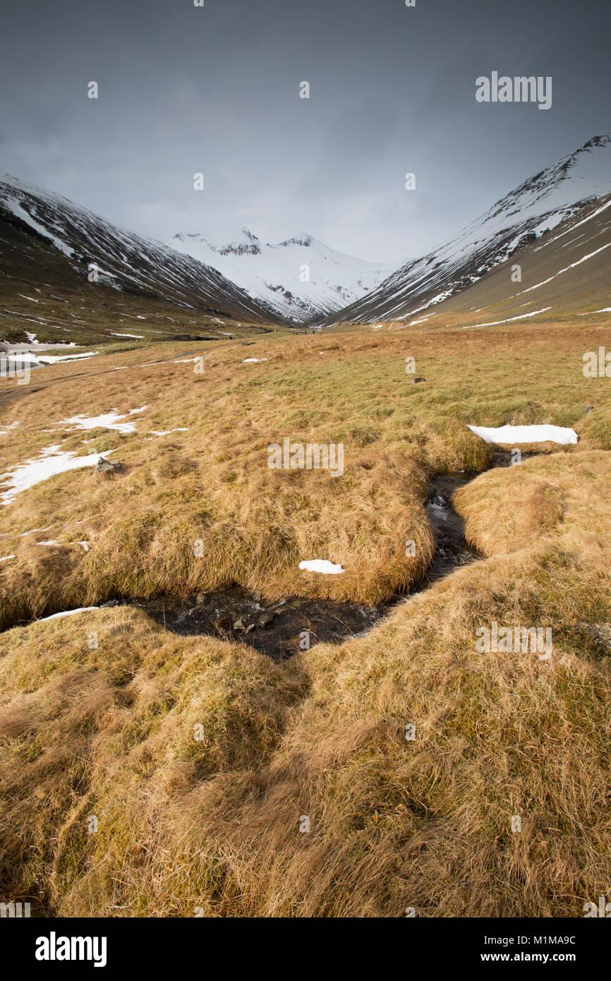 Þorgeirsstaðardalur on the east coast of Iceland - Stock Image