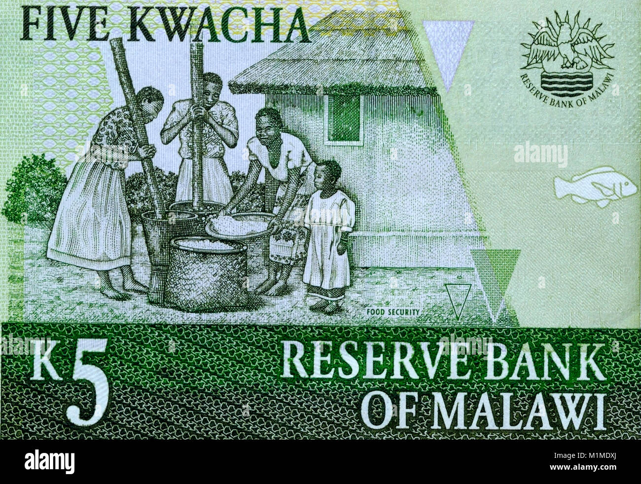 Malawi Five 5 Kwacha Bank Notes - Stock Image