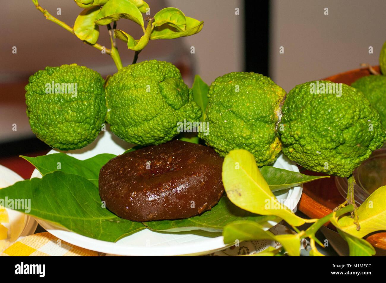 Italy Sardinia  Sa Pompia (Citrus limon var. pompia Camarda ) - Stock Image