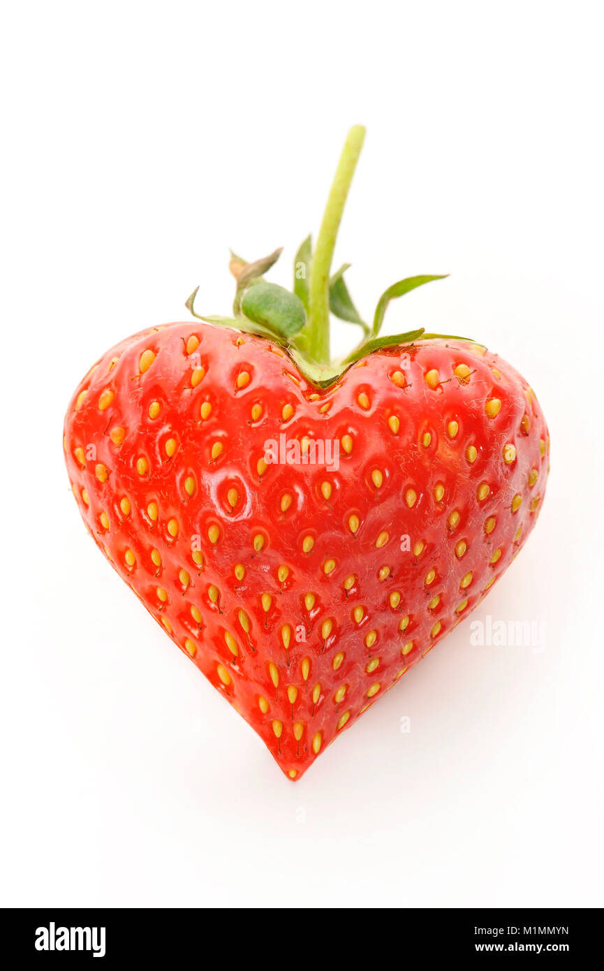Strawberry in the shape of a heart, Erdbeere in Herzform Stock Photo