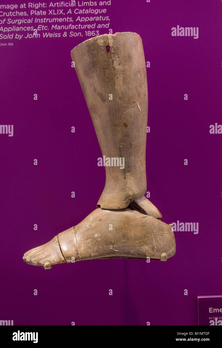 An Emery artificial leg (ca 1870) on display in the National Museum of Health and Medicine, Silver Spring, MD, USA. - Stock Image