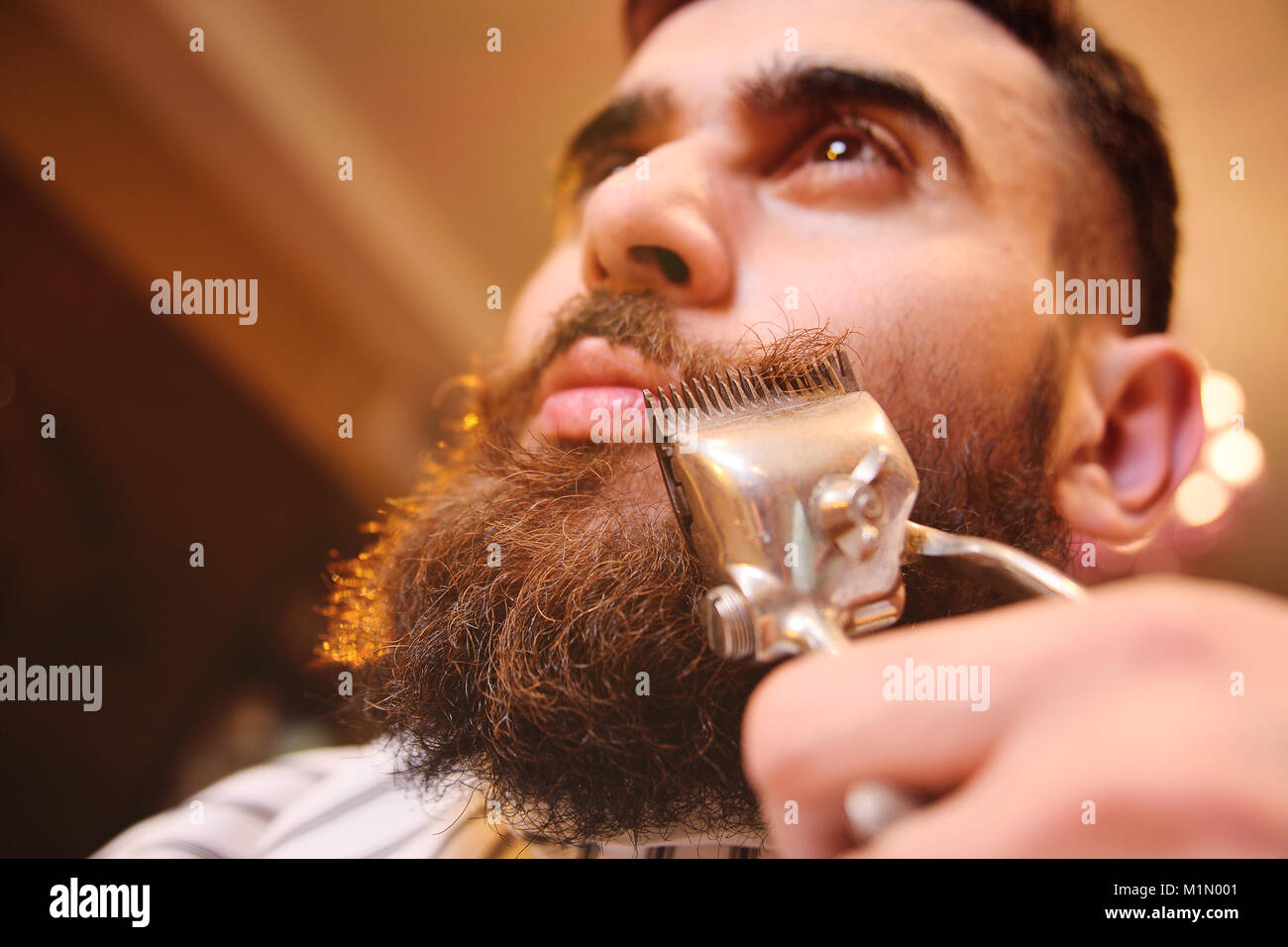 a young manly man with a beard in barbershop - Stock Image