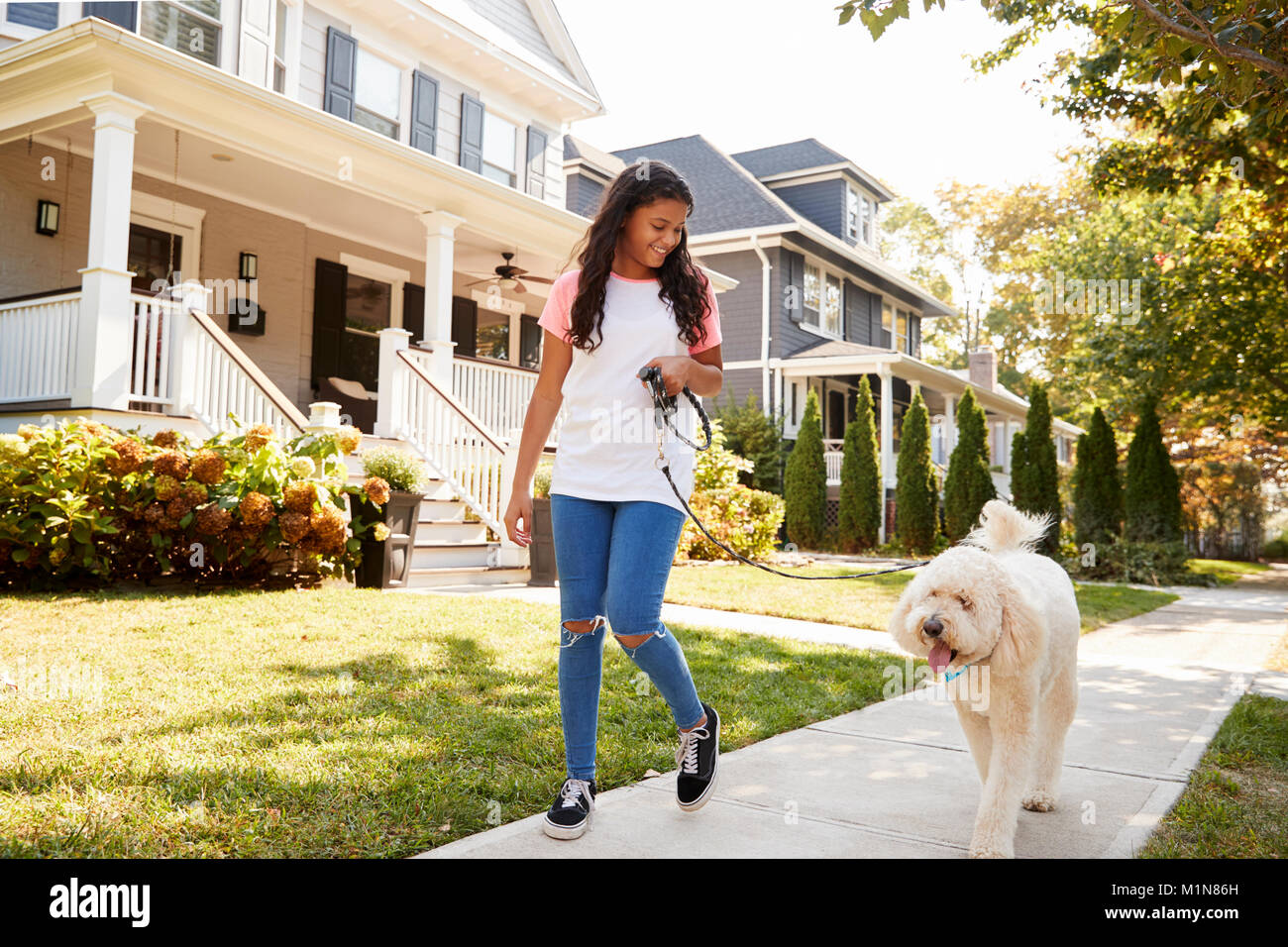 Girl Walking Dog Along Suburban Street - Stock Image