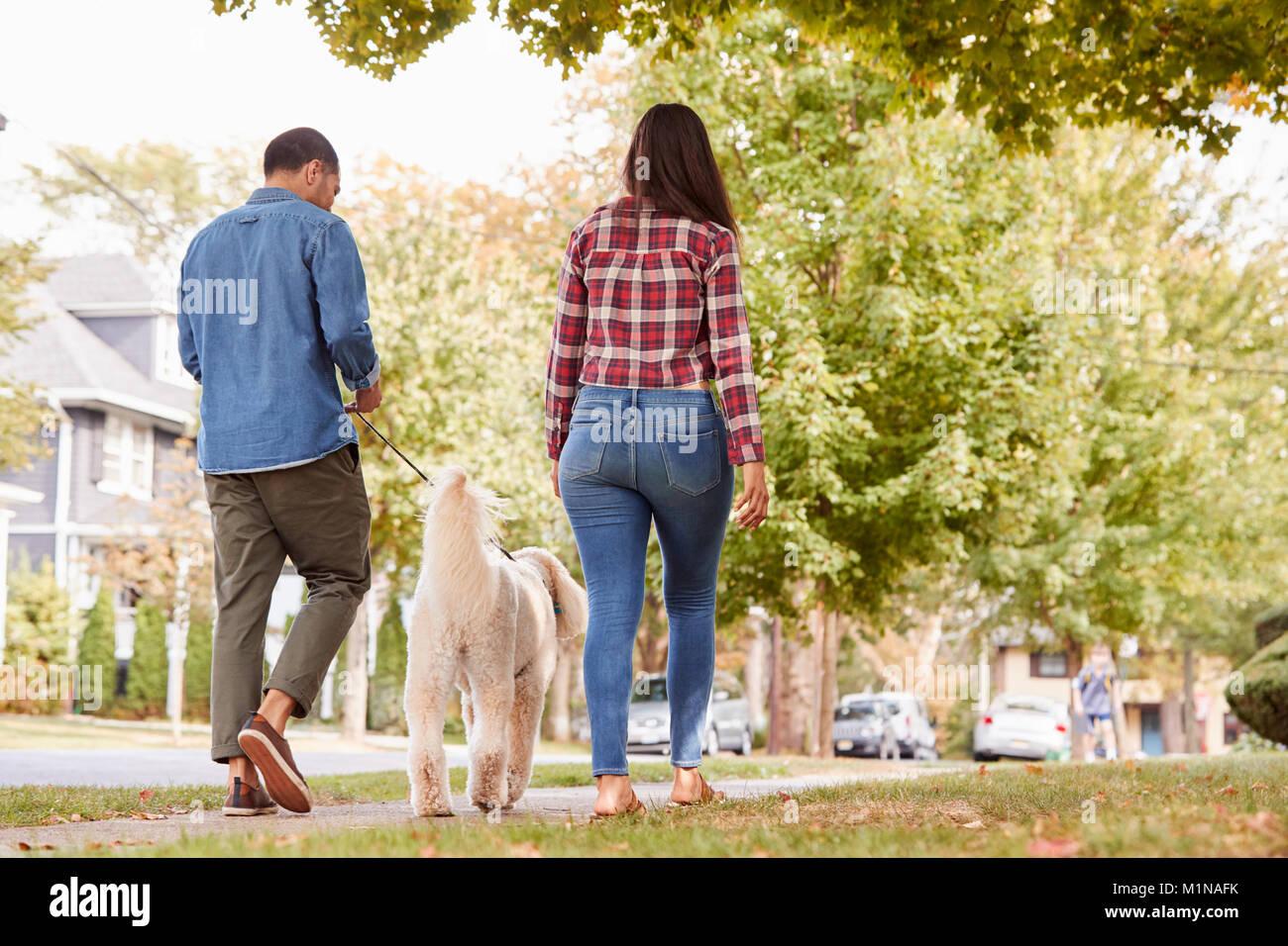 Rear View Of Couple Walking Dog Along Suburban Street - Stock Image