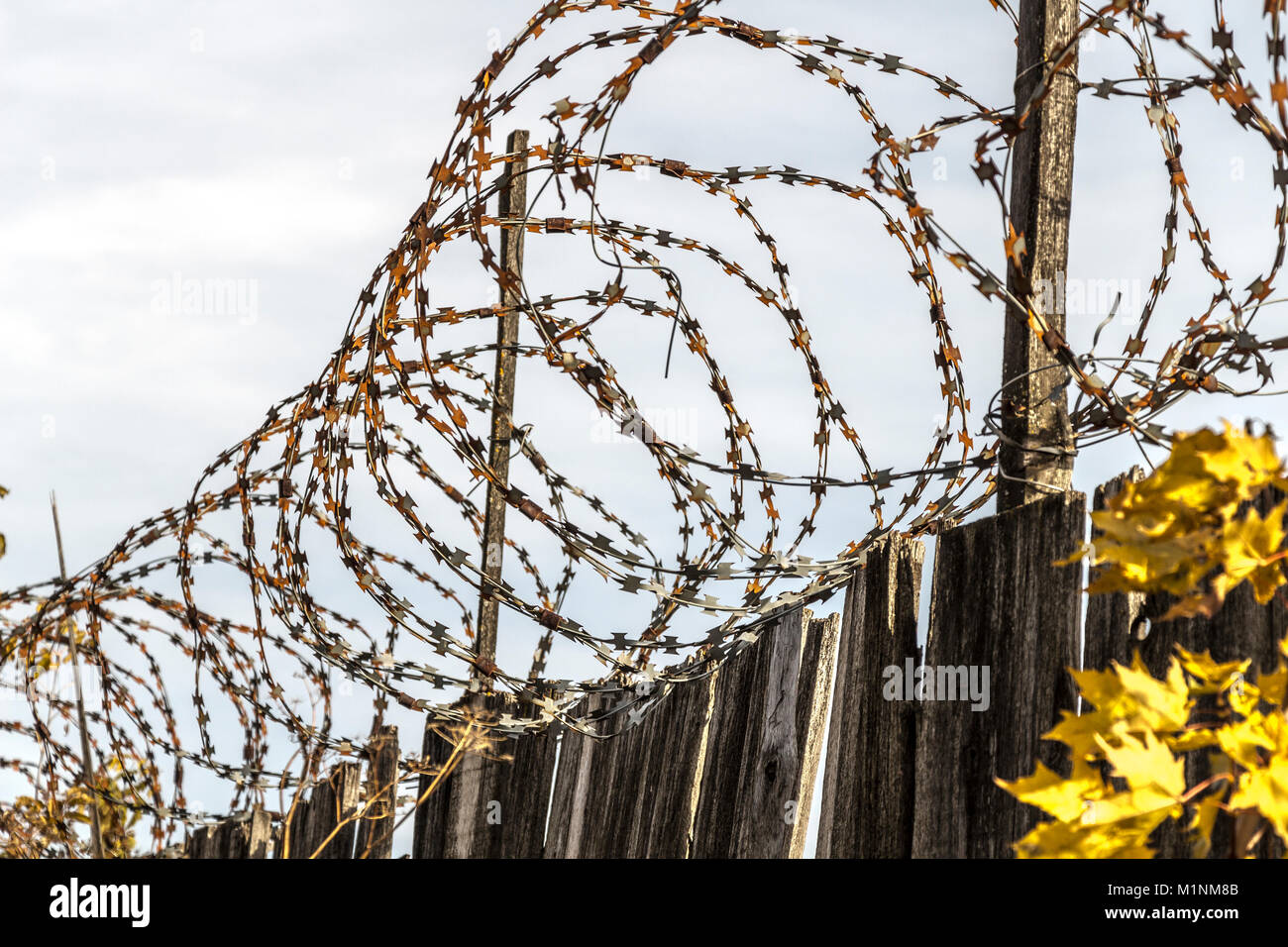 Barb Wire Fence Protection Metal Prison Safety Stock Photos & Barb ...