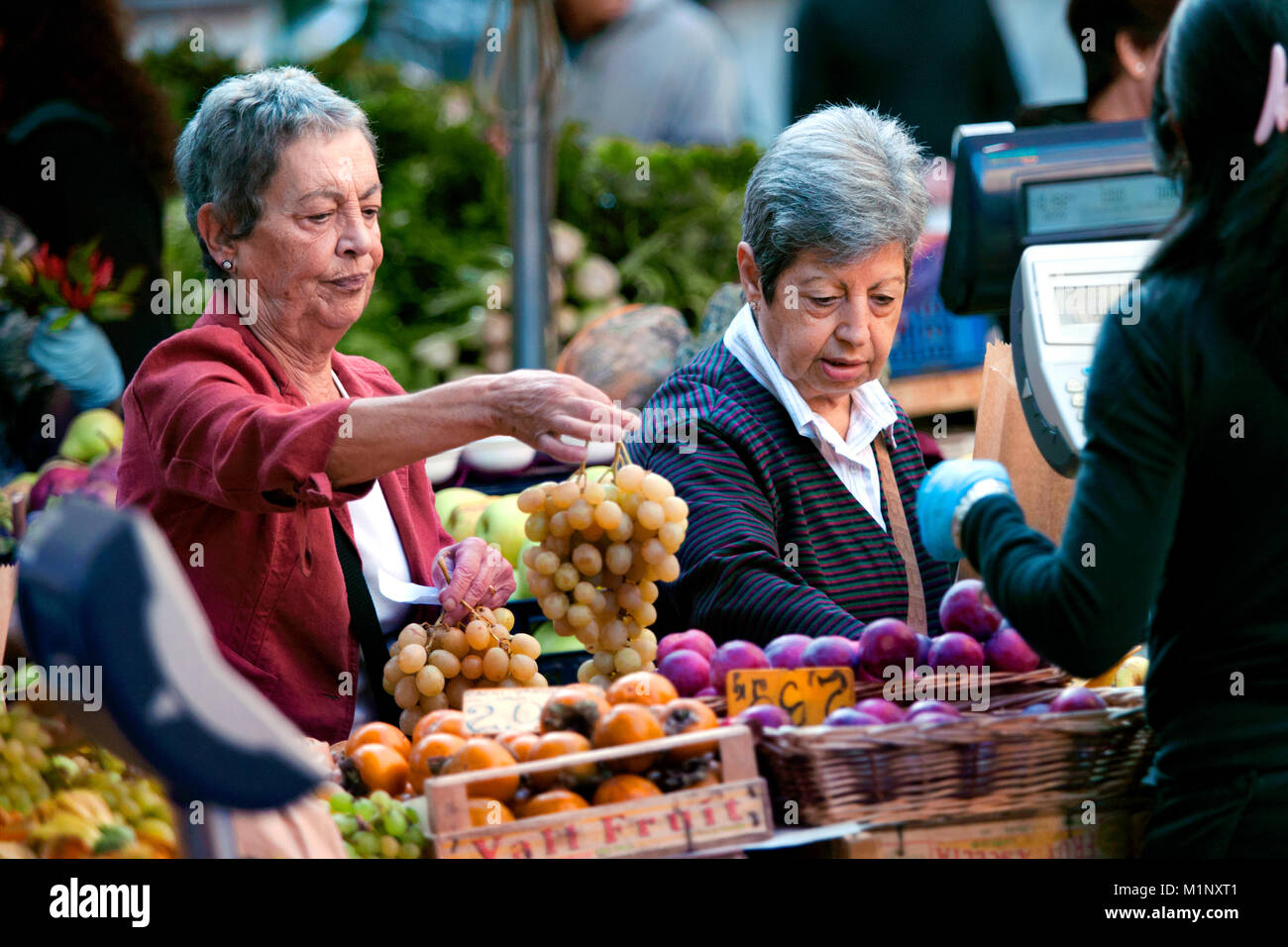 Local customer buying grapes at the Campo de' Fiori farmers market, Piazza Campo de' Fiori, Rome, Italy - Stock Image