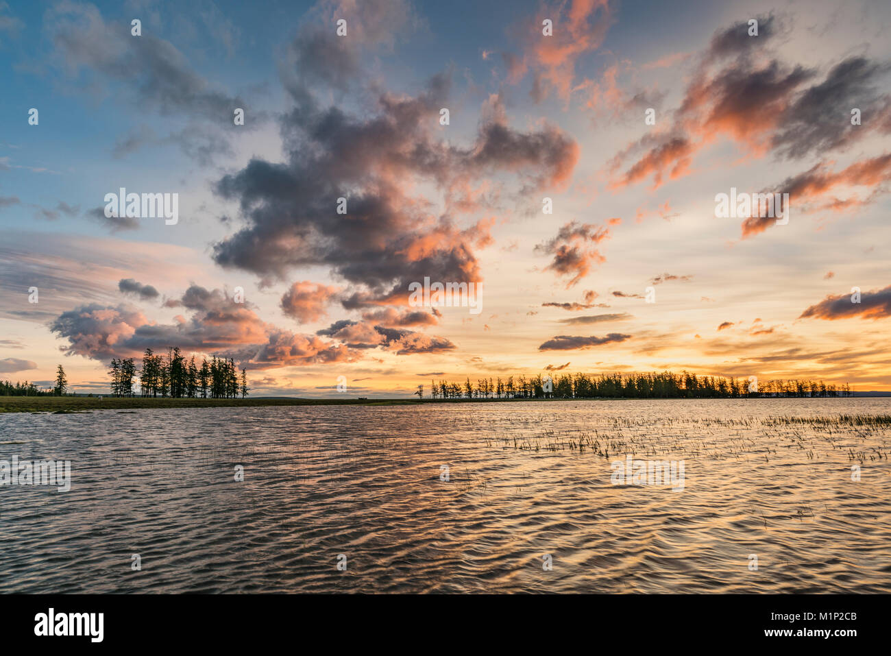 Fir trees and clouds reflecting on the suface of Hovsgol Lake at sunset, Hovsgol province, Mongolia, Central Asia, - Stock Image