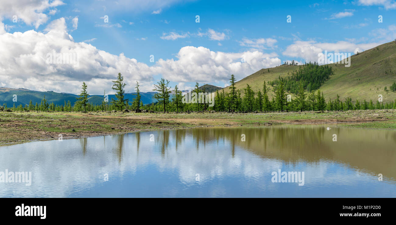 Water pond and fir trees in White Lake National Park, Tariat district, North Hangay province, Mongolia, Central - Stock Image