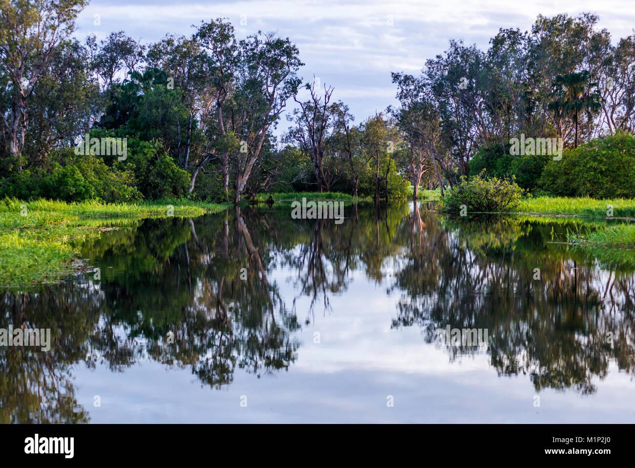 Yellow Water billabong and wetland, Kakadu National Park, UNESCO World Heritage Site, Northern Territory, Australia, Stock Photo