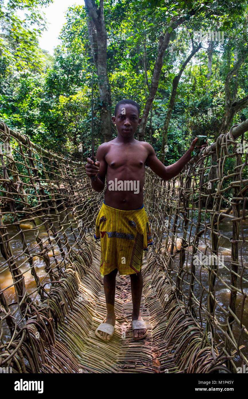 Pygmy man on a hand made vine bridge in the Dzanga-Sangha Park, UNESCO World Heritage Site, Central African Republic, - Stock Image