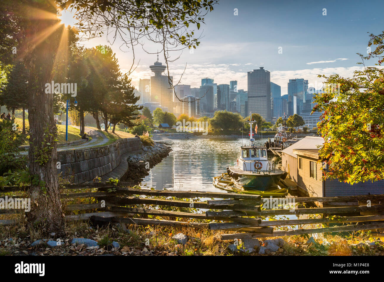 View of city skyline and Vancouver Lookout Tower from CRAB Park at Portside, Vancouver, British Columbia, Canada, - Stock Image