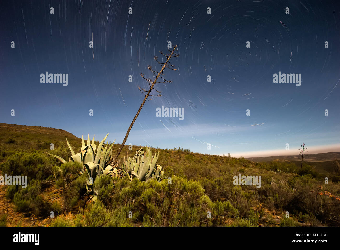 Beautiful star trail landscape image from the little Karoo region close to Uniondale in the Garden Route of South - Stock Image